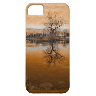 Amber Reflections Phone Case