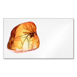 Amber stone customize Magnetic business card