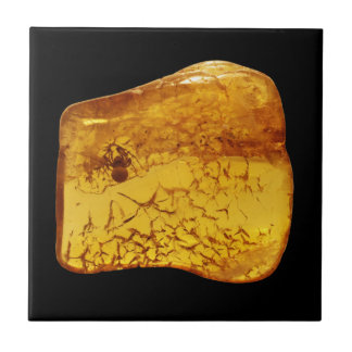 Amber stone with spider tile