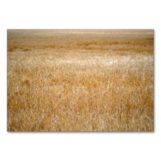 Amber Waves of Grain Table Card