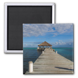Ambergris Caye Belize Magnet