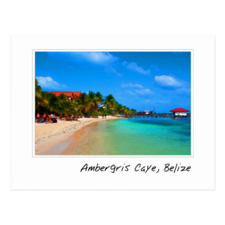 Ambergris Caye Belize Travel Destination Postcard
