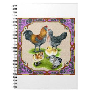 Ameraucana Family Framed Notebooks