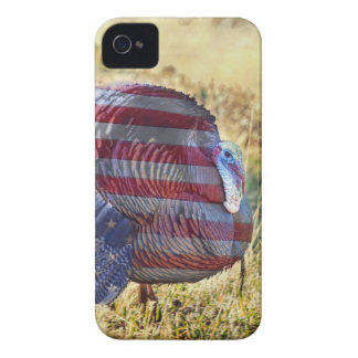 Amercan Wild Turkey iPhone 4 Covers