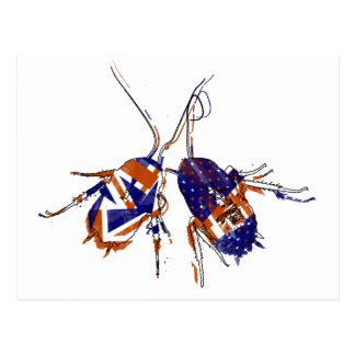 Ameri-Brit Cockroaches Postcard