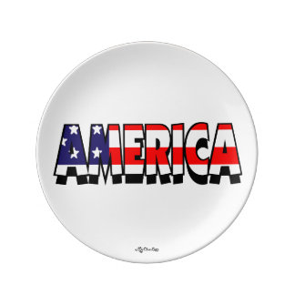 America! 8.5 PLATE Porcelain Plates