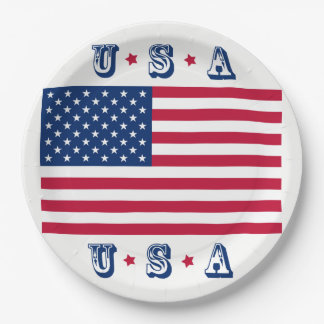 America flag American USA Paper Plate