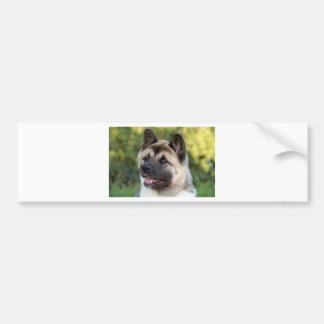 American Akita Dog Bumper Sticker