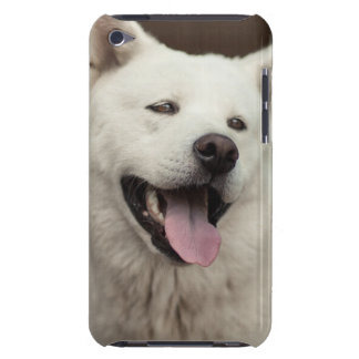 American Akita iPod Touch Cover