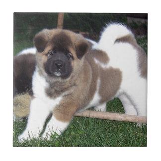 American Akita Puppy Dog Ceramic Tiles