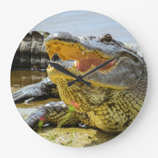 American Alligator face to face Large Clock
