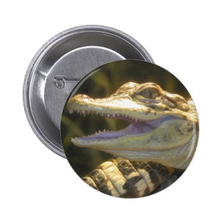 American Alligator Mouth Open 2 Inch Round Button