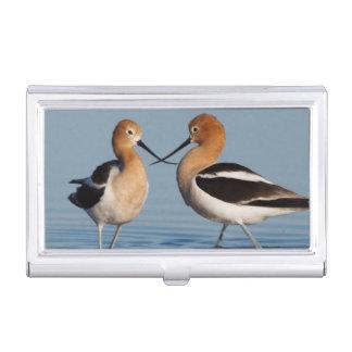 American Avocet Pair Business Card Holders