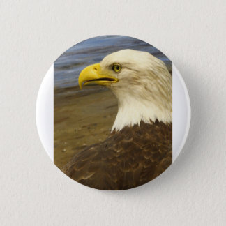 American Bald Eagle 2 Inch Round Button