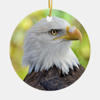 American bald eagle ceramic ornament