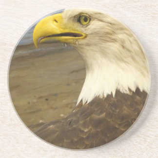 American Bald Eagle Coaster
