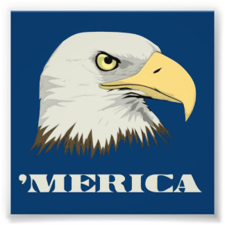American Bald Eagle For Merica Photo Print