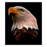 American Bald Eagle Head Posters