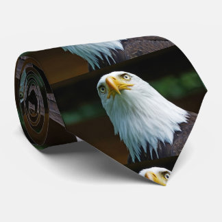 American Bald Eagle Head Tie