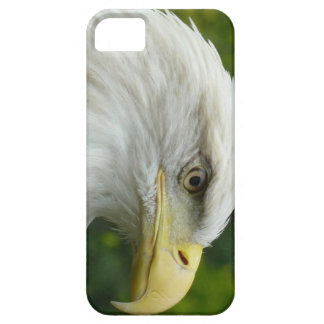 American Bald Eagle iPhone 5 Covers