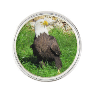 American Bald Eagle Lapel Pin
