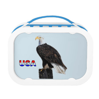 American Bald Eagle Lunch Boxes