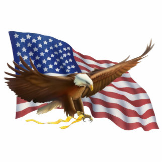 American Bald Eagle Magnet Photo Sculpture Magnet