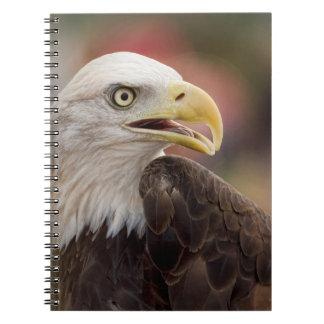 """American Bald Eagle"" Notebook"