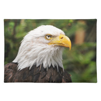 American Bald Eagle Place Mats