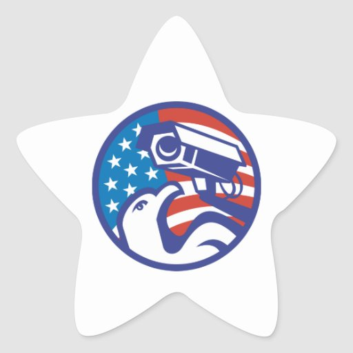 American Bald eagle Security Camera Star Stickers