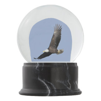 American Bald Eagle Snow Globe