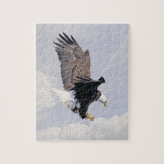 American Bald Eagle Symbol Of The United States Jigsaw Puzzle
