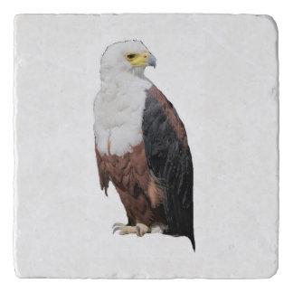 American Bald Eagles Trivet