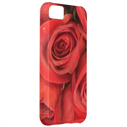American Beauty Rose - who needs a gift box iPhone 5C Cases