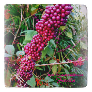 American Beautyberry at Bok Tower Gardens Florida Trivet