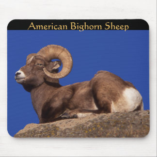 American Bighorn Sheep Mousepad