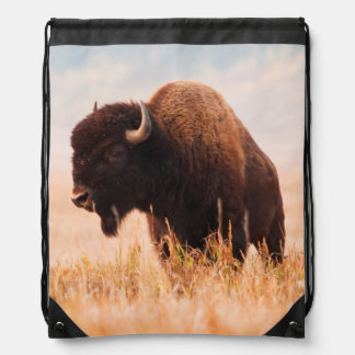 American Bison (Bison Bison) Herd In Teton 2 Cinch Bag