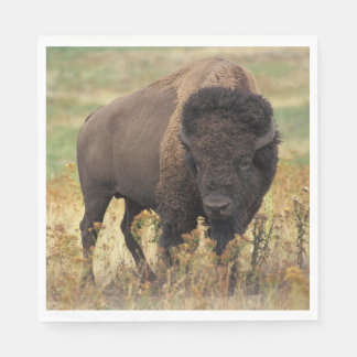 American bison disposable napkin