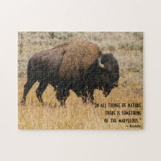 American Bison Grazing In Meadow Grass Photograph Puzzle