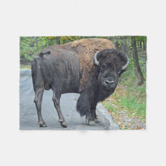 American Bison In Early Autumn Fleece Blanket