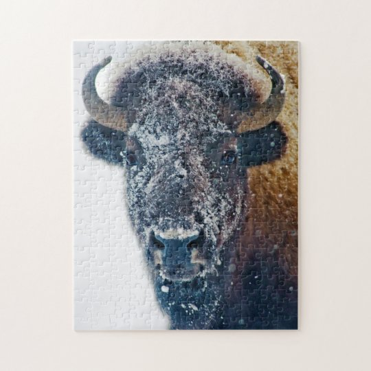 American Bison in Snow Wildlife Puzzle