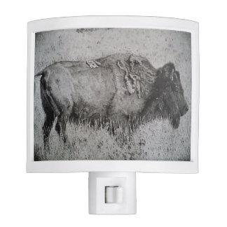 American Bison Night Light