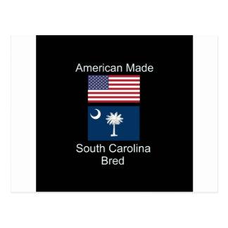 """American Born..South Carolina Bred"" Flag Design Postcard"