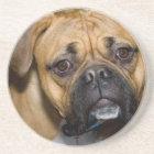 American Boxer Dog Coasters