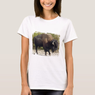 American Buffalo Ladies Fitted T-Shirt