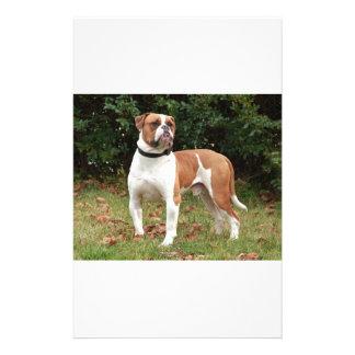American Bulldog Dog Stationery
