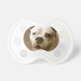 American Bulldog Pacifier