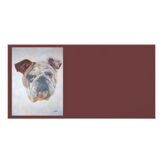 American Bulldog Photo Cards