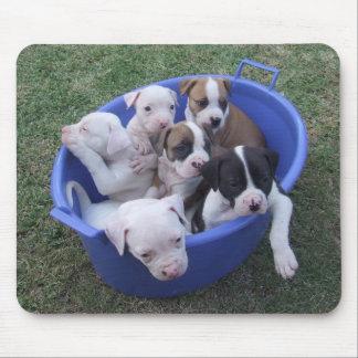 American Bulldog Puppies Mouse Pad
