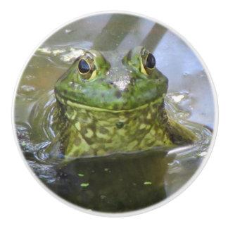 American Bullfrog Ceramic Knob